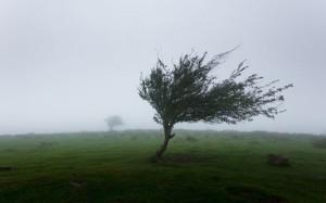 tempête gabriel